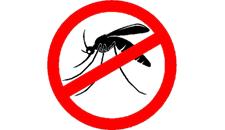 Todos juntos na luta contra a Dengue, a Zika e a Chikungunya